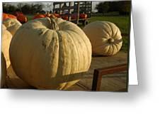 Ghost Pumpkin Greeting Card