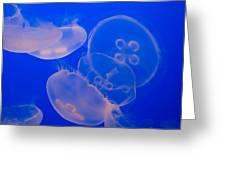 Ghostly Jellyfish Greeting Card