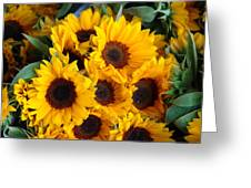 Giant Sunflowers For Sale In The Swiss City Of Lucerne Greeting Card
