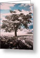 Giant Tree In City Greeting Card