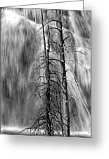 Gibbons Falls In Yellowstone National Park Greeting Card
