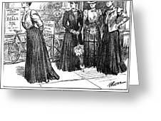 Gibson Girl, 1890s Greeting Card
