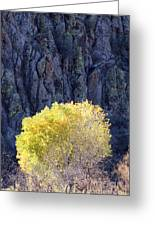 Gilded Autumn Greeting Card