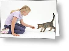 Girl Feeding Kitten From A Spoon Greeting Card