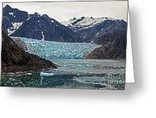 Glacial Bay And Ice Greeting Card by Mike Reid