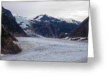 Glacial Field Greeting Card