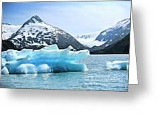 Glacier Remnants Greeting Card