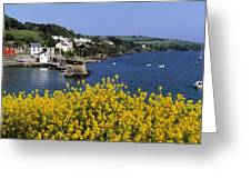 Glandore Village & Harbour, Co Cork Greeting Card