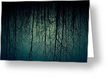 Glares Of Tree Stares Greeting Card