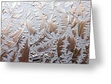 Glass Designs Greeting Card