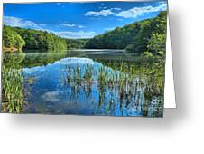 Glassy Waters Greeting Card