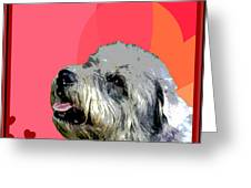 Glen Of Imaal Terrier Greeting Card