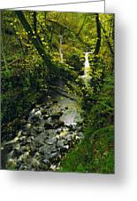 Glenariff, Co Antrim, Ireland Waterfall Greeting Card