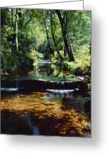 Glenleigh Gardens, Co Tipperary Greeting Card