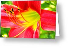 Glenna's Loving Legacy Greeting Card