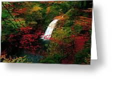 Glenoe Waterfall And Glen, Co Antrim Greeting Card