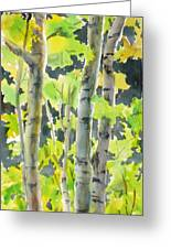 Glittering Poplars Greeting Card