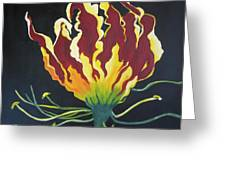 Gloriosa Lily Greeting Card