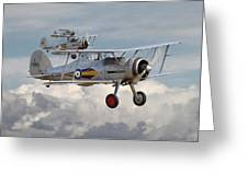 Gloster Gladiator Greeting Card by Pat Speirs