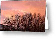 Glow Of A Winter Sunset Greeting Card