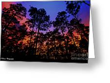 Glowing Forest Greeting Card