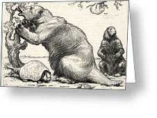 Glyptodon And Megatherium, Extinct Fauna Greeting Card