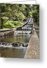 Gnoll Country Park 4 Greeting Card