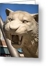 Go Get 'em Tigers Greeting Card