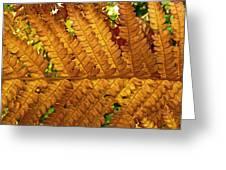 Gold Leaf Greeting Card by William Fields