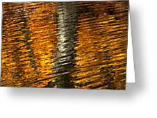 Gold Reflection Greeting Card