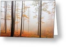 Golden Autumn Forest Greeting Card