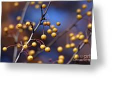 Golden Berries Greeting Card