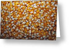 Golden Corn Greeting Card