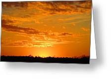 Golden Evening Greeting Card