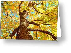 Golden Green Greeting Card