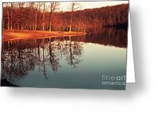 Golden Light Greeting Card