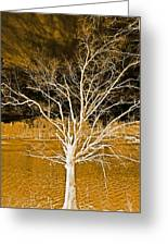 Golden Magical Tree Greeting Card