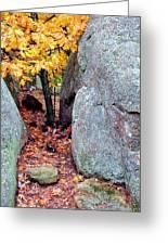 Golden Oak Through Boulders At Elephant Rocks State Park Greeting Card