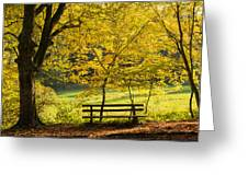 Golden October - Bench And Yellow Trees In Fall Greeting Card