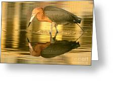 Golden Reflection Greeting Card