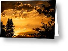 Golden Sky 2 Greeting Card by Kevin Bone