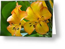 Golden Tropical Flowers Greeting Card