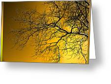 Golden Walnut Tree Greeting Card