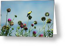 Goldfinches On Thistles Greeting Card