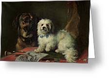 Good Companions Greeting Card by Earl Thomas