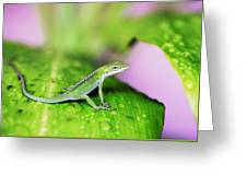 Good To Be Green Greeting Card