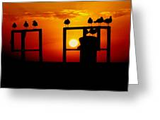 Goodnight Gulls Greeting Card by Karen Wiles
