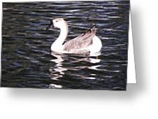 Goose And Lake Greeting Card