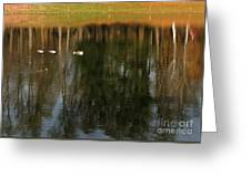 Goose Goose Duck Goose Greeting Card by Trish Hale