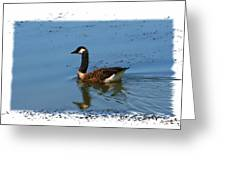 Goose On The Pond Greeting Card